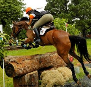 O Concurso Completo de Equitação...