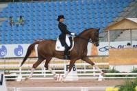 International Riding & Dressage Meeting Coudelaria Ilha Verde 2013