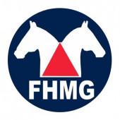 Editais FHMG Eleição
