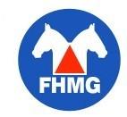 COMUNICADO FHMG - 12/2012