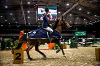 CEHJUR Princess Quiny vence a série Cavalos Novos 7/8 Anos