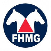 Editais FHMG 001/2021