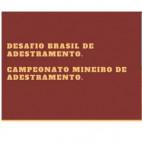 Confira o Programa Campeonato Mineiro de Adestramento - Desafio Brasil CBH - Local: Centro Hípico Vila Boa Vista- MG