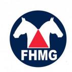 RANKING COPA MINAS FHMG 2020 - ATUALIZADO